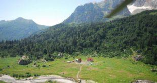 Группу из 12 туристов задержали на приграничной территории Сочи
