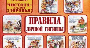 Памятки о правилах гигиены планируют раздавать туристам в аэропорту и на железнодорожных станциях Сочи