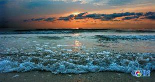 Часть самолета и три авиационные бомбы обнаружили водолазы на дне моря в Сочи