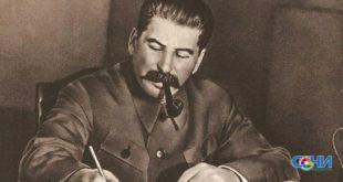 Краснокнижные растения уничтожили на бывшей даче Сталина ради возведения элитного жилья