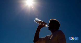 В Сочи ожидается сильная жара