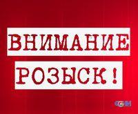 Сочинские полицейские и волонтеры разыскали детей, пропавших накануне