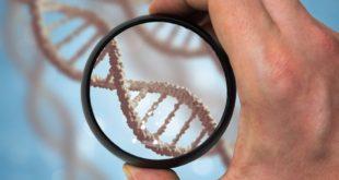 Персональный ДНК-отчет с уникальной информацией о своем организме можно получить на РИФ в Сочи
