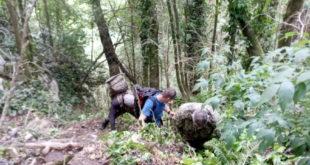 Трое туристов обратились за помощью к сочинским спасателям