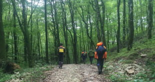 Спасатели нашли в горах Сочи грибника спустя трое суток