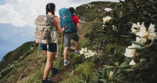 «Путь к водопадам» открылся в горах Сочи