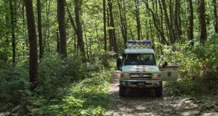 В лесу Сочи заблудились туристы
