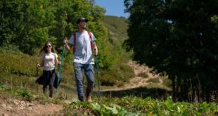 Популярность пеших маршрутов на «Роза Хутор» продолжает расти