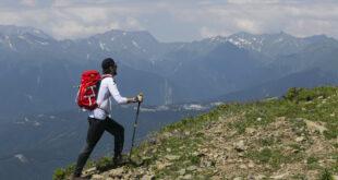 На горном курорте «Роза Хутор» состоитсямеждународная конференция «Природный туризм: глобальные вызовы и перспективы России»